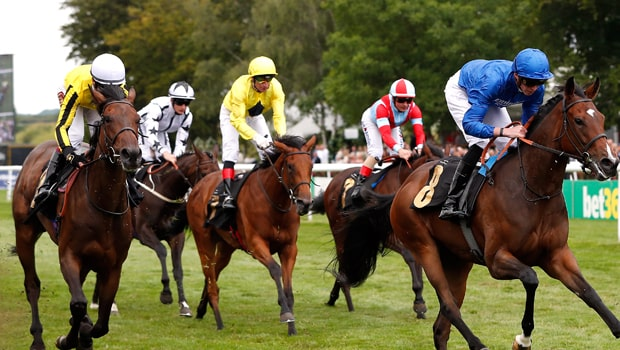Horse race betting Tips: Picking the Winnable Pony